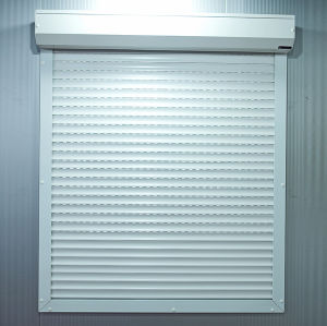 Rolling Shutter Window (45mm slats) pictures & photos