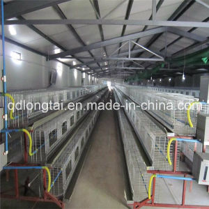 Modern Steel Structure Chicken Poultry Hangar Warehouse pictures & photos