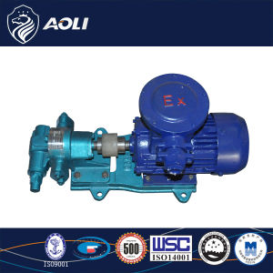 Good Quality Ex-Proof Motor Gear Oil Pump pictures & photos