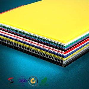2-12mm Polypropylene Twin Wall Sheet Corrugated PP Board pictures & photos