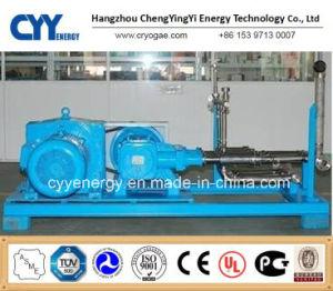 Large Flow and Medium Pressure LNG Liquid Oxygen Nitrogen Argon Piston Pump pictures & photos