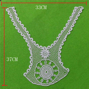 Fashion Cotton Eyelet Appliques Collar (cn89) pictures & photos