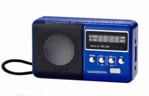 Portable Multimedia Radio USB TF Card FM Radio pictures & photos