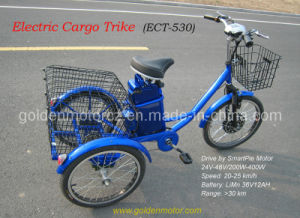 Electric Cargo Trike with Smart Pie Motor pictures & photos