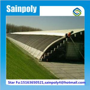 Sainpoly Brand Plastic-Film Cover Solar Greenhouse pictures & photos