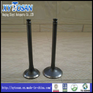 Engine Valve Used for BMW 320I pictures & photos