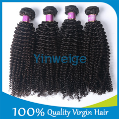 Types Wholesale Virgin Kinky Curly Brazilian Human Hair Weave in Extension for Sale to South Africa