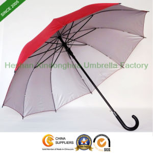 10 Ribs Cheap Steel Straight Golf Umbrella with Imitation Leather Handle (GOL-1027B) pictures & photos