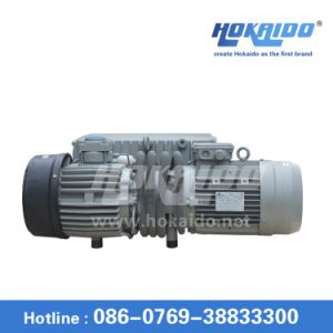Single Stage Rotary Vane Vacuum Pump Used in Oil Filter Machine (RH0100) pictures & photos