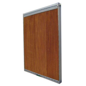 Wet Curtain for Ventilation System in Factory and Schools pictures & photos