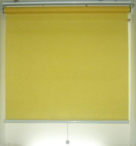 Beige Sunscreen Patterned Roller Blind Manual Control, 28mm pictures & photos