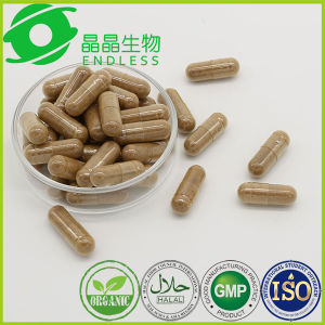 Dong Chong Xia Cao Capsules Wholesale Bodybuilding Supplements pictures & photos
