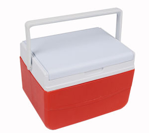 Cooler Box Capacity: 5L (CCC00005) HDPE+PU +PP pictures & photos