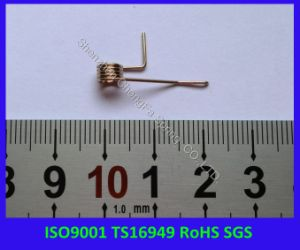 ISO9001 Ts16949 RoHS Compliant Phosphor Bronze Spring