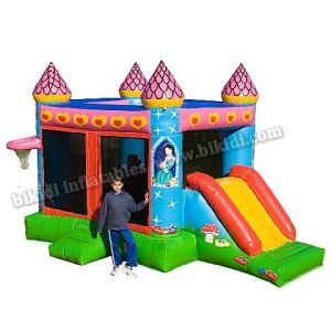 Inflatable Combo Castle with Slide and Basketball Hoop B3080 pictures & photos
