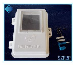 External Meter Box, SMC Meter Box, Custom Made Meter Box pictures & photos