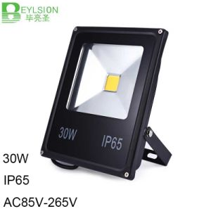 30W IP65 LED Flood Light Outdoor Light pictures & photos