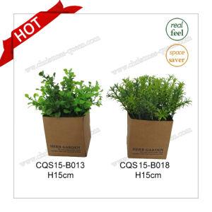H15cm Plastic Decorative Plant Artificial Flower for Home Decoration pictures & photos