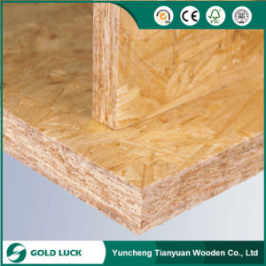 China Linyi Manufacturer 9mm/12mm/18mm OSB pictures & photos
