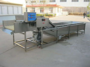 Fruit and Vegetables Bubble Washer Fruit and Vegetable Washing Machine pictures & photos