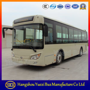 Yuexi Bus Transportion
