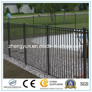 China Powder Coated Outdoor Security Fence/ Steel Fence pictures & photos