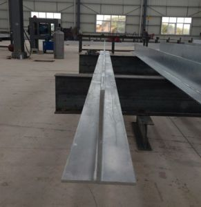 Hot Sale Prime Steel T Bar G350 pictures & photos