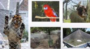 Aviary Mesh / Stainless Steel Bird Netting pictures & photos