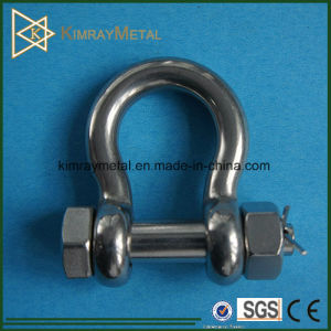 Stainless Steel Oversize Bolt Pin Anchor Shackle with Nut pictures & photos
