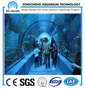 Customized Transparent UV PMMA Tunnel of Aquarium Project Price pictures & photos