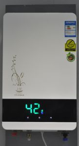 Balanced Gas Water Heater pictures & photos