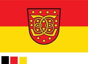 Festival Flag/Advertisement Flag/Decoration Flag/Sports Flag (0704) pictures & photos
