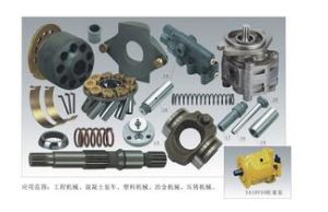 Application to Rexroth A10V (S) 016/18//28/45/71/100/140 Hydraulic Pump Spare Parts pictures & photos