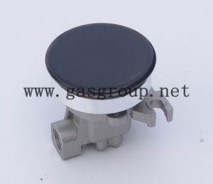 Auxiliary Burner pictures & photos