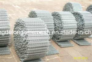Compound Balanced Belt/Conveyor Belt Mesh pictures & photos