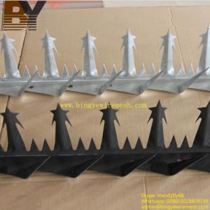 Anti-Climed Razor Spikes Wall Spike pictures & photos