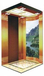 Fjzy-High Quality and Safety Villa Elevator Fjs-1541 pictures & photos