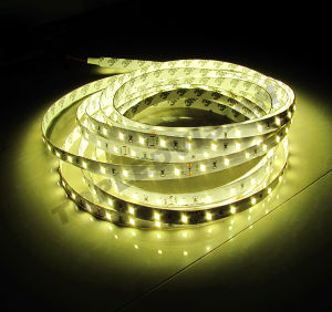 Quality LED Strip with IEC/En62471 pictures & photos