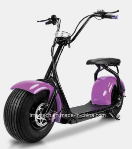 High Quality Electric Moped pictures & photos