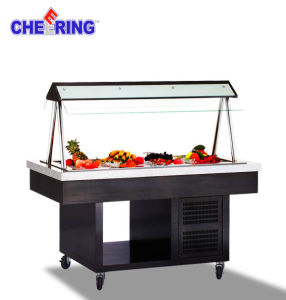 Ce Approved Commercial Stainless Steel Buffet Salar Bar pictures & photos