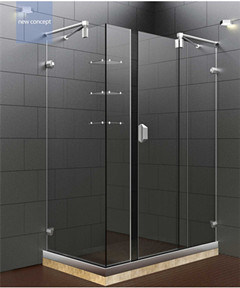 New Design Stainless Steel Hardware Shower Doors with Shelf Hs-2863f (E)