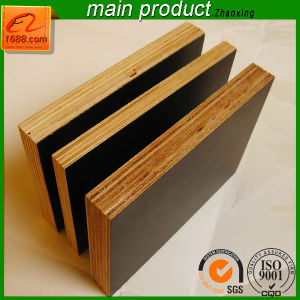4X8X18mm Plywood with UV Coated for Furniture