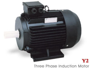 Ie2 (CE) Y2 Three Phase Electric Motor (Y2-802-4) pictures & photos