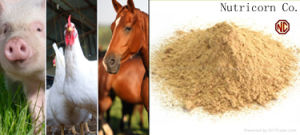 L-Lysine HCl 98.5% Feed Grade Cattle Feed Feed Concentrate pictures & photos