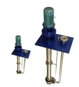 Vertical Sump Pump (FY) pictures & photos