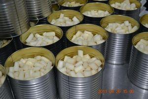 Canned Asparagus in Bulk