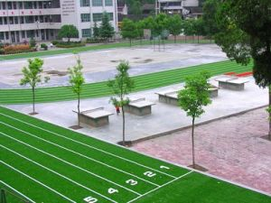 Artificial Grass for Running Track (LT-WS25)