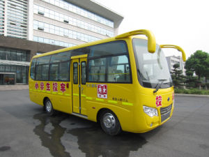 Dongfeng 6690 School Bus