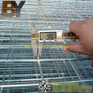 Galvanized PVC Coated Stainless Steel Welded Wire Mesh pictures & photos