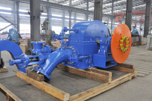 Horizontal Pelton Turbine Unit pictures & photos